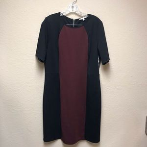 [41Hawthorn] NWT Beckie Ponte Colorblock Dress